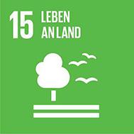 SDG15 - Leben an Land